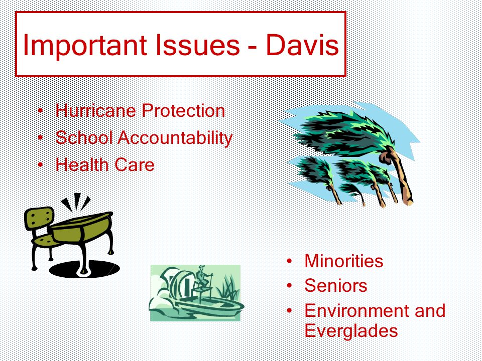 Important Issues - Davis Hurricane Protection School Accountability Health Care Minorities Seniors Environment and Everglades