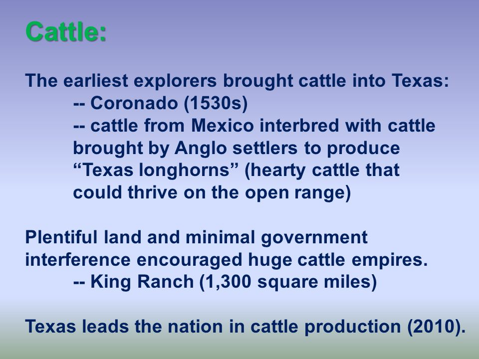 The Economy of Texas: The economy of the state has been and still is in transition: -- cattle -- cotton -- timber -- oil -- high tech