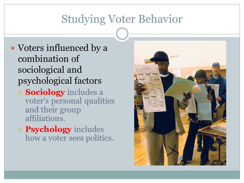 political socialization factors influence