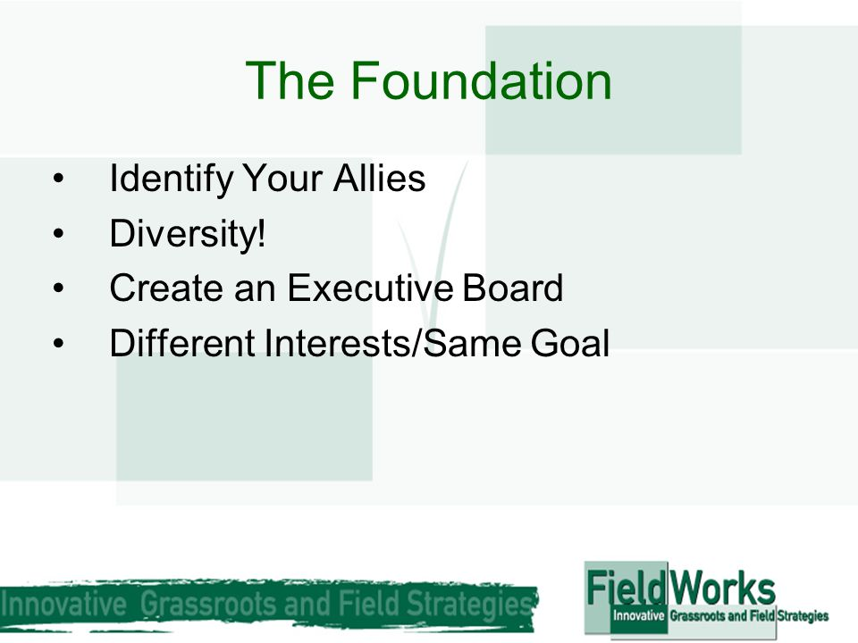 The Foundation Identify Your Allies Diversity! Create an Executive Board Different Interests/Same Goal