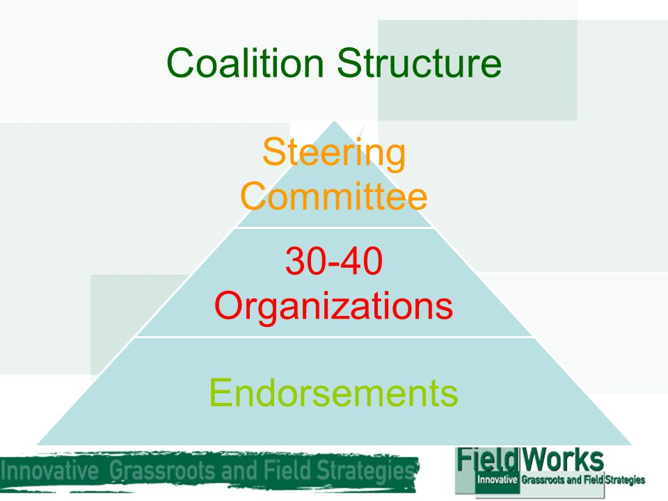 Coalition Structure Steering Committee 30-40 Organizations Endorsements