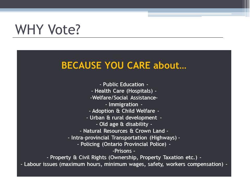 WHY Vote.