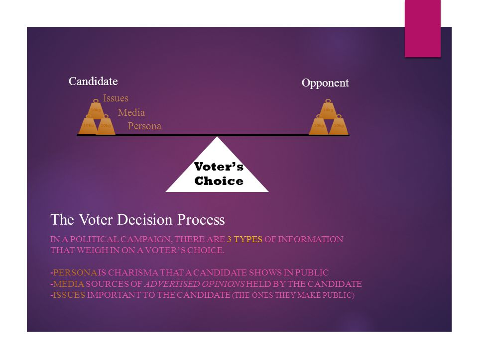 The Voter Decision Process IN A POLITICAL CAMPAIGN, THERE ARE 3 TYPES OF INFORMATION THAT WEIGH IN ON A VOTER'S CHOICE. -PERSONA IS CHARISMA THAT A CA