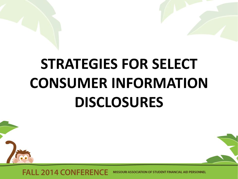 STRATEGIES FOR SELECT CONSUMER INFORMATION DISCLOSURES