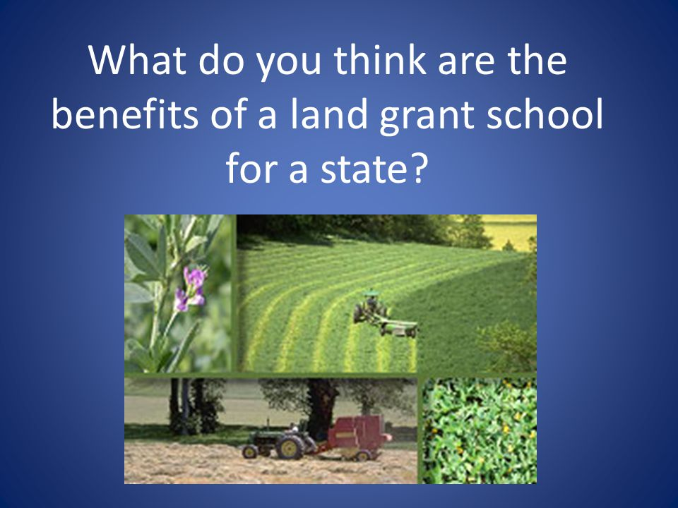 Land-Grant Benefits Allowed for the financing of the Georgia State College of Agriculture and Mechanical Arts Based on pillars: 1.Teaching 2.Research