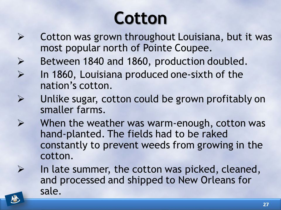 Cotton  Cotton was grown throughout Louisiana, but it was most popular north of Pointe Coupee.  Between 1840 and 1860, production doubled.  In 1860