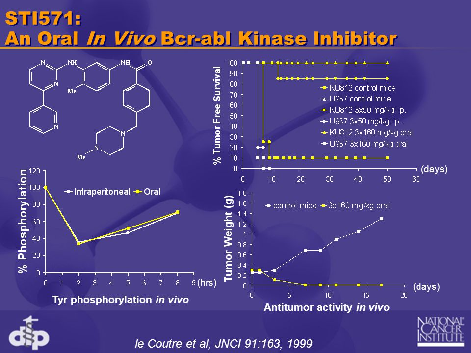 STI571: An Oral In Vivo Bcr-abl Kinase Inhibitor Tyr phosphorylation in vivo le Coutre et al, JNCI 91:163, 1999 Antitumor activity in vivo (hrs) (days)