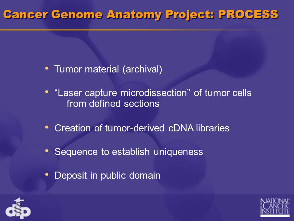 "Cancer Genome Anatomy Project: PROCESS Tumor material (archival) ""Laser capture microdissection"" of tumor cells Creation of tumor-derived cDNA librari"