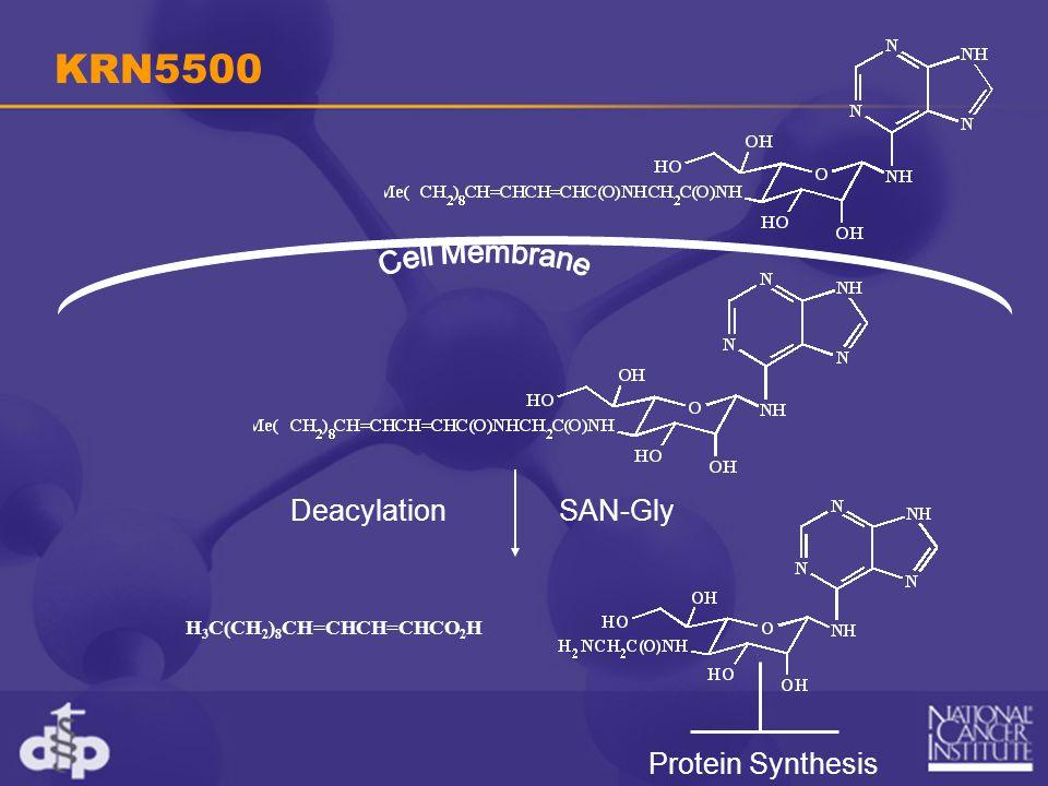 KRN5500 H 3 C(CH 2 ) 8 CH=CHCH=CHCO 2 H DeacylationSAN-Gly Protein Synthesis