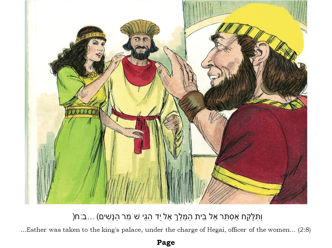 ...Esther was taken to the king's palace, under the charge of Hegai, officer of the women... (2:8) Page וַתִּלָּקַח אֶסְתֵּר אֶל בֵּית הַמֶּלֶךְ אֶל י