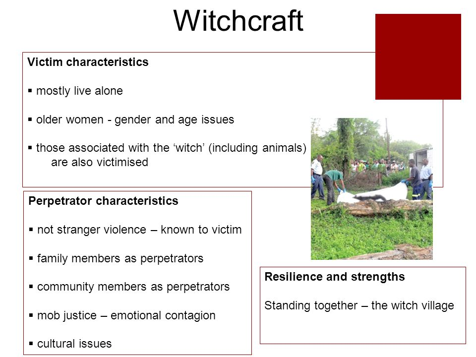 Witchcraft Perpetrator characteristics  not stranger violence – known to victim  family members as perpetrators  community members as perpetrators  mob justice – emotional contagion  cultural issues Resilience and strengths Standing together – the witch village Victim characteristics  mostly live alone  older women - gender and age issues  those associated with the 'witch' (including animals) are also victimised