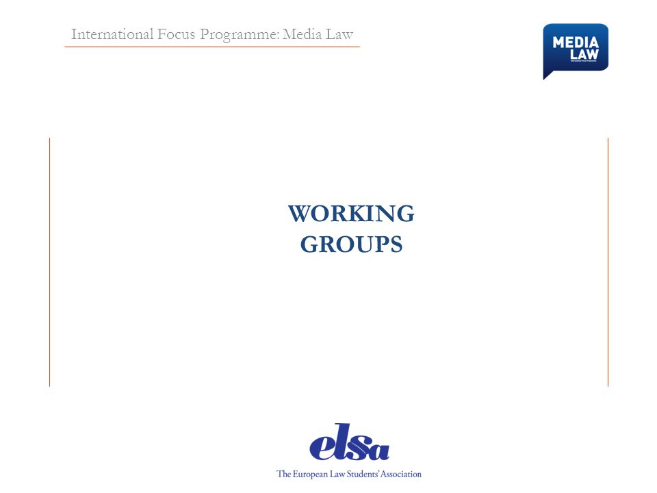 International Focus Programme: Media Law WORKING GROUPS