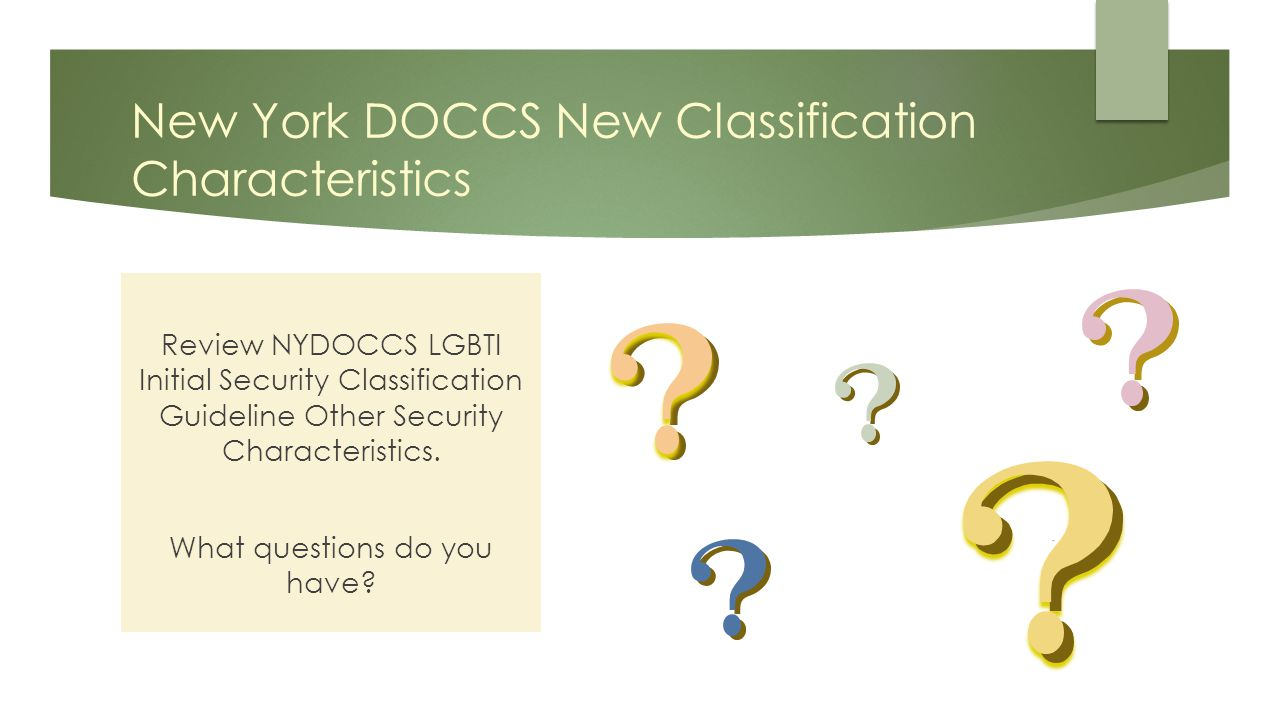 New York DOCCS New Classification Characteristics Review NYDOCCS LGBTI Initial Security Classification Guideline Other Security Characteristics.