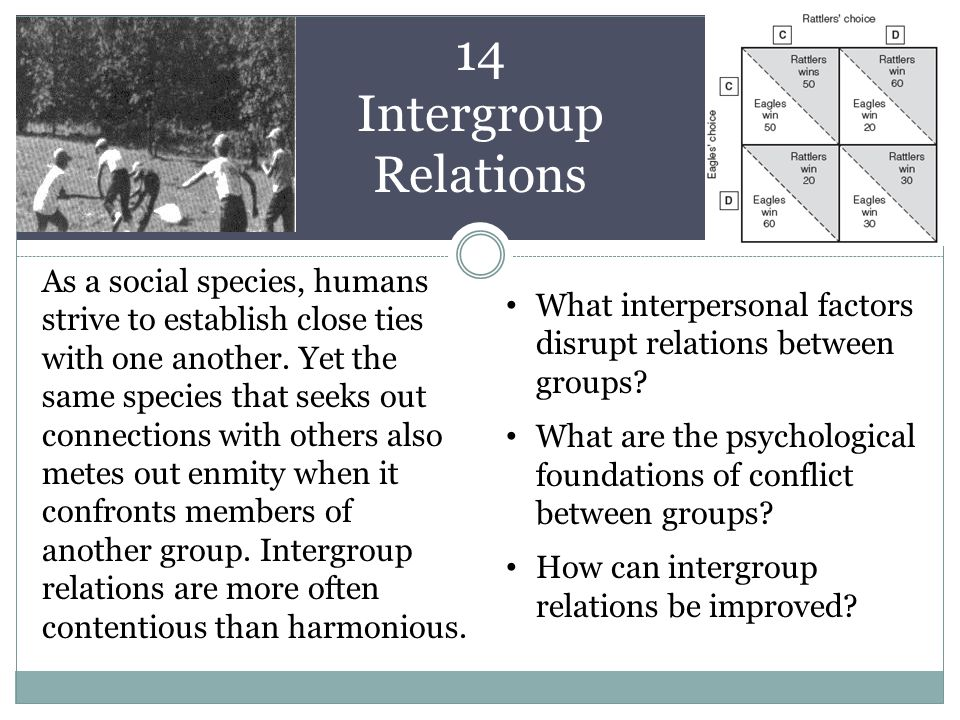 14 Intergroup Relations As a social species, humans strive to establish close ties with one another.