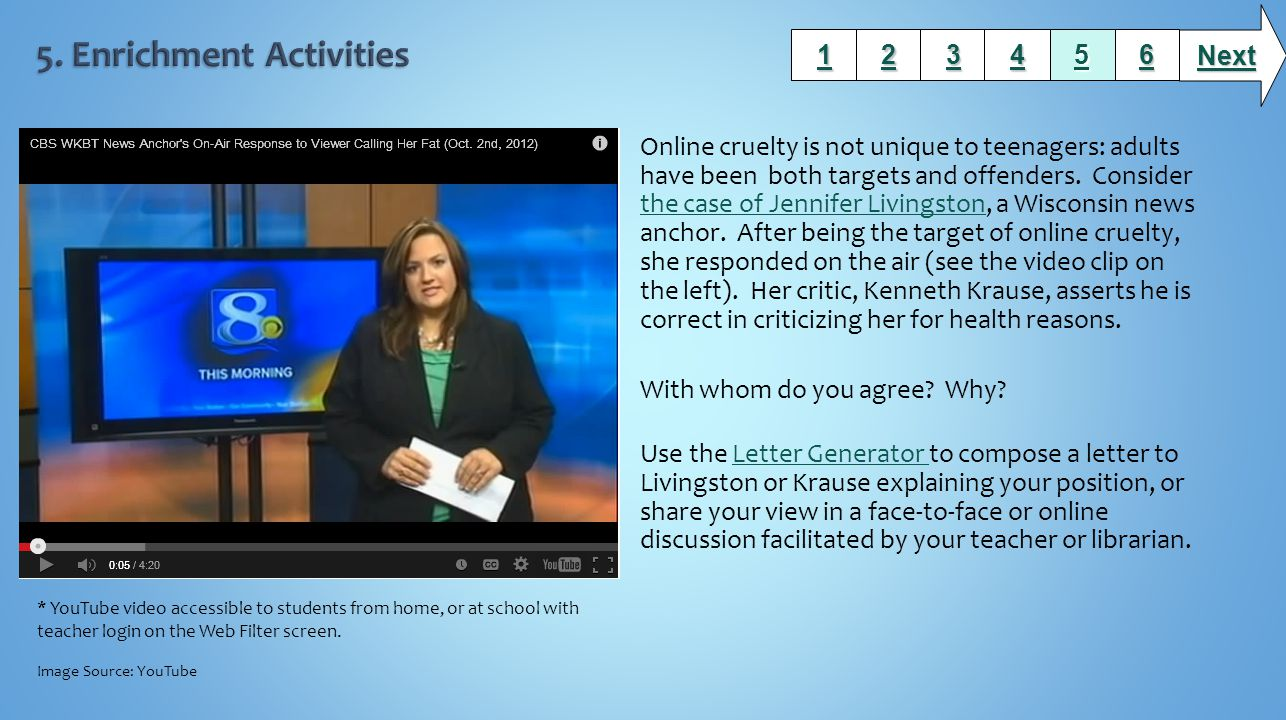 Online cruelty is not unique to teenagers: adults have been both targets and offenders.
