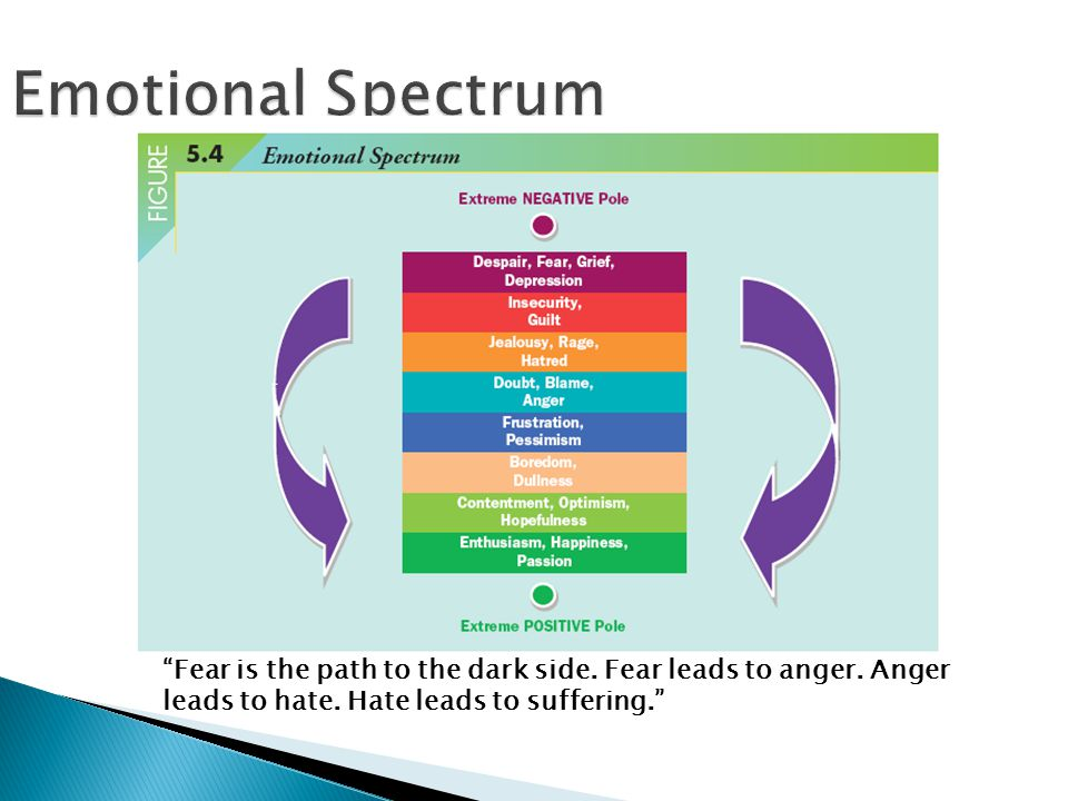 Emotional Spectrum Fear is the path to the dark side.
