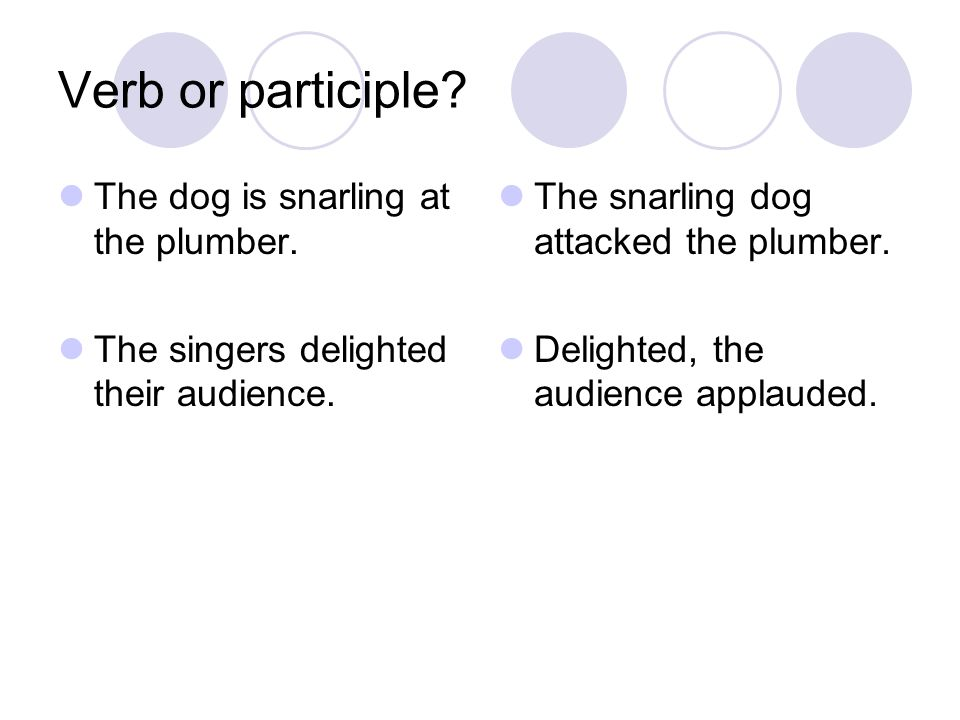 Verb or participle.The dog is snarling at the plumber.
