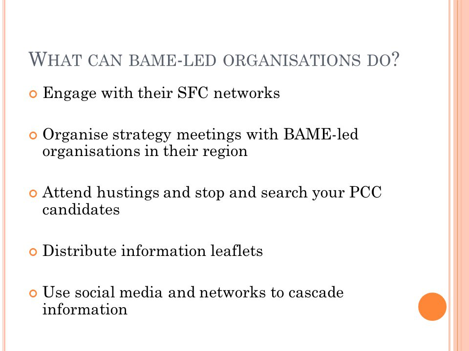 W HAT CAN BAME - LED ORGANISATIONS DO .