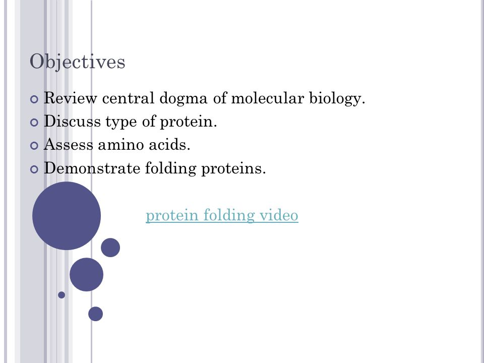Objectives Review central dogma of molecular biology. Discuss type of protein. Assess amino acids. Demonstrate folding proteins. protein folding video