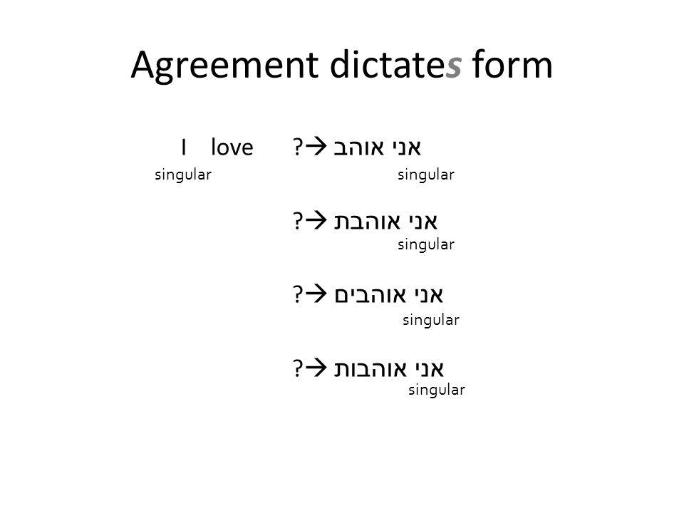 I love  אני אוהב  אני אוהבת  אני אוהבים  אני אוהבות singular Agreement dictates form