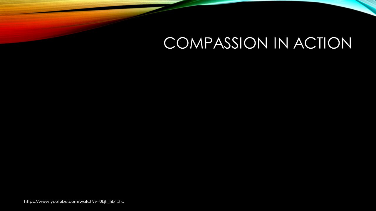 COMPASSION IN ACTION https://www.youtube.com/watch?v=0Ejh_hb15Fc