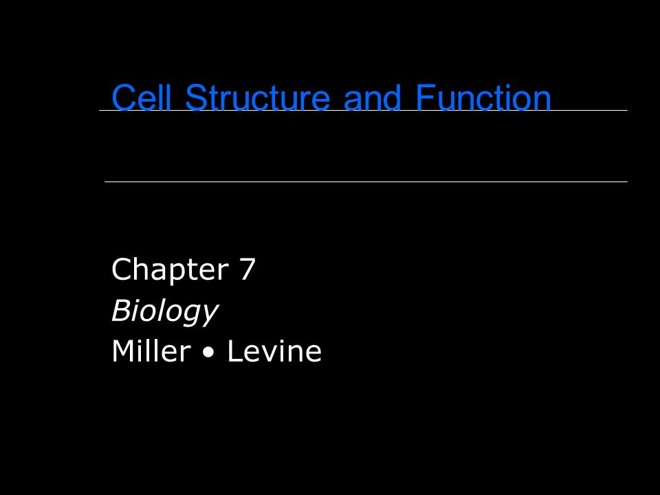 Cell Structure and Function Chapter 7 Biology Miller Levine