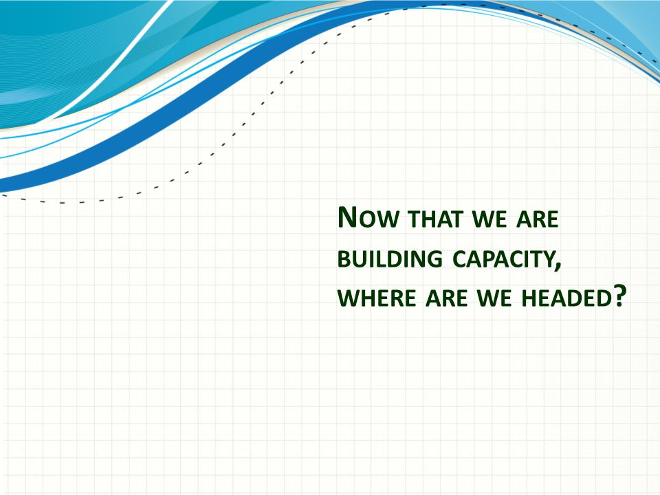 N OW THAT WE ARE BUILDING CAPACITY, WHERE ARE WE HEADED