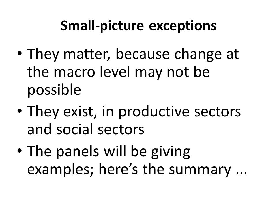 Small-picture exceptions They matter, because change at the macro level may not be possible They exist, in productive sectors and social sectors The p