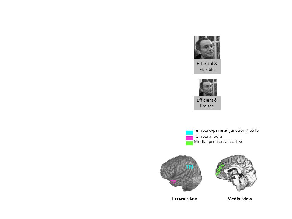 Effortful & Flexible Efficient & limited Temporo-parietal junction / pSTS Temporal pole Medial prefrontal cortex Lateral view TPJ TP Medial view mPFC