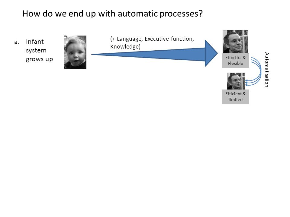 (+ Language, Executive function, Knowledge) Automatisation Effortful & Flexible Efficient & limited How do we end up with automatic processes? Infant