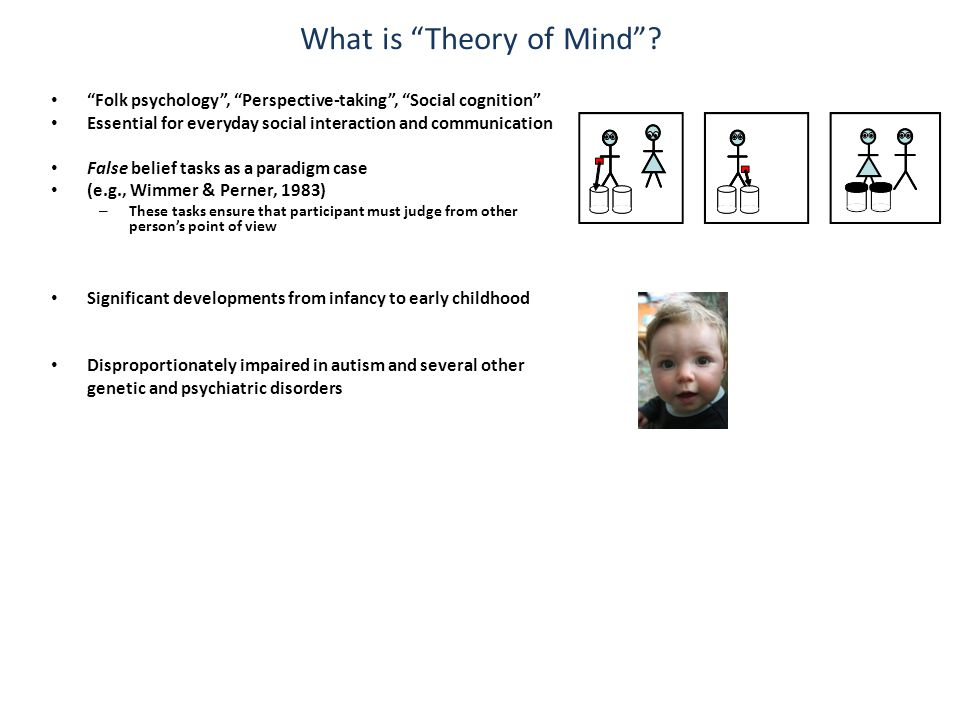 What is Theory of Mind .