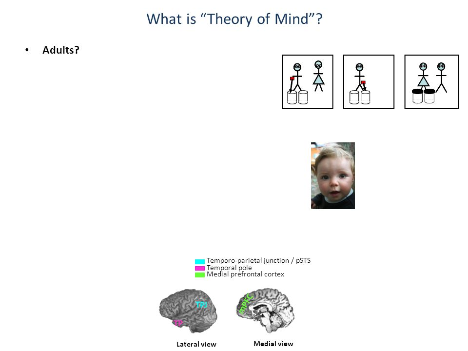 Specialised neural systems for Mindreading.