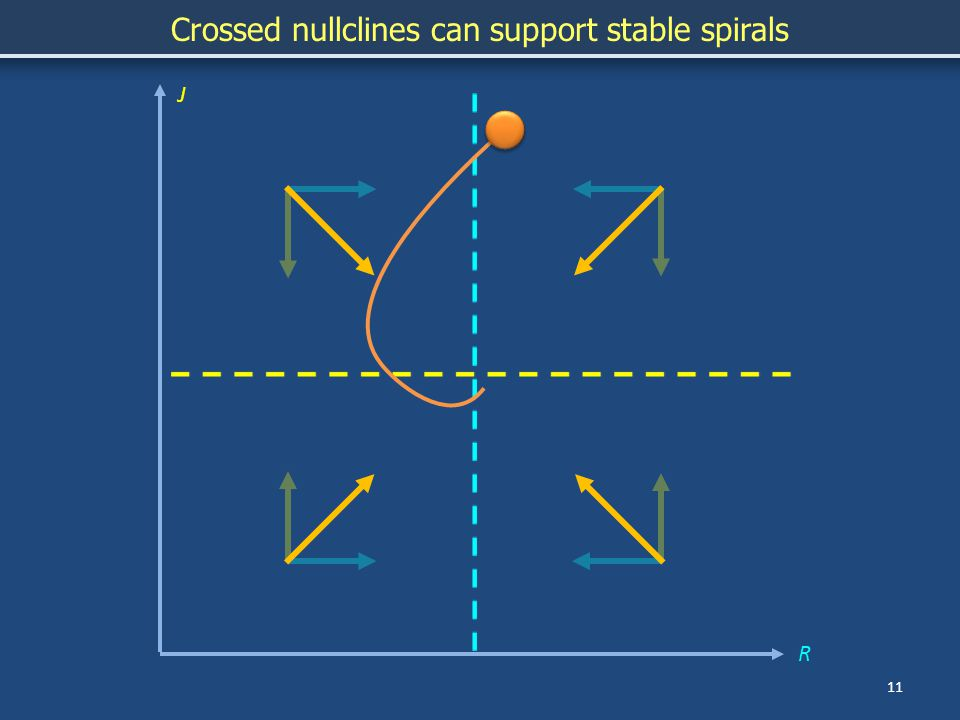 J R 11 Crossed nullclines can support stable spirals