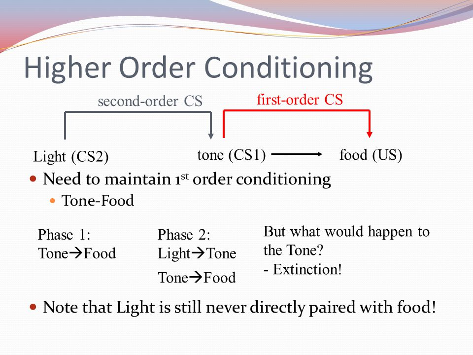 Higher Order Conditioning Need to maintain 1 st order conditioning Tone-Food Note that Light is still never directly paired with food.