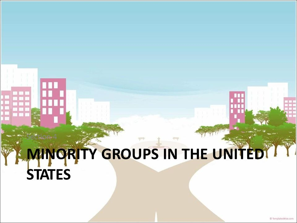 Section 4 MINORITY GROUPS IN THE UNITED STATES