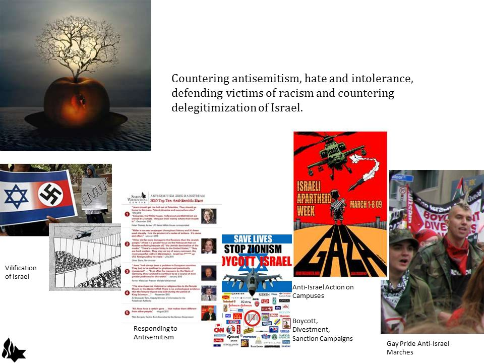 Countering antisemitism, hate and intolerance, defending victims of racism and countering delegitimization of Israel.