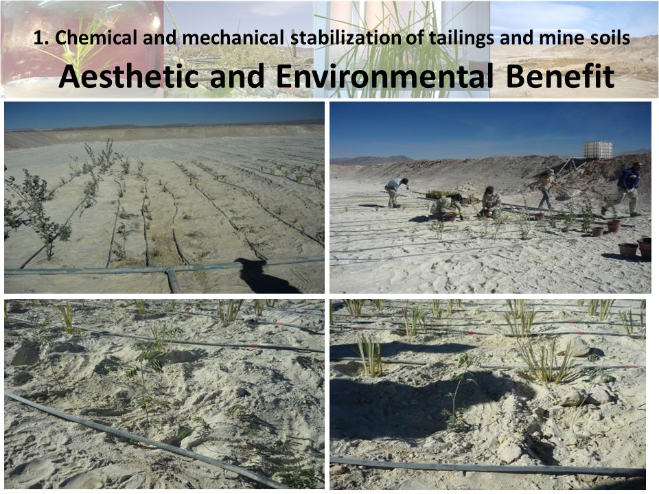 8 1. Chemical and mechanical stabilization of tailings and mine soils Aesthetic and Environmental Benefit