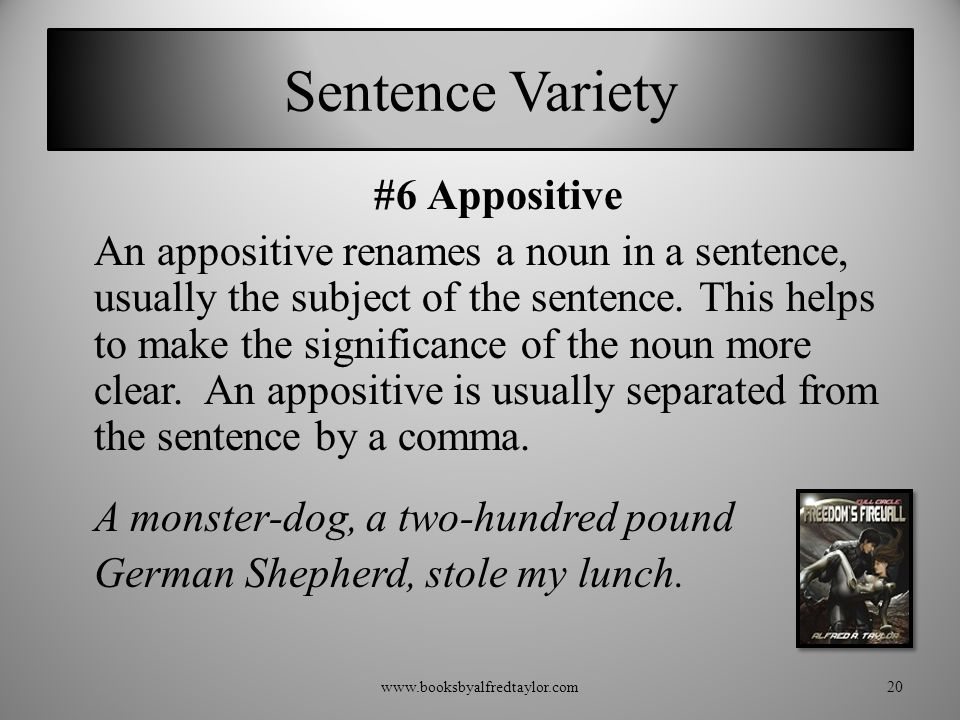 Sentence Variety #6 Appositive An appositive renames a noun in a sentence, usually the subject of the sentence. This helps to make the significance of