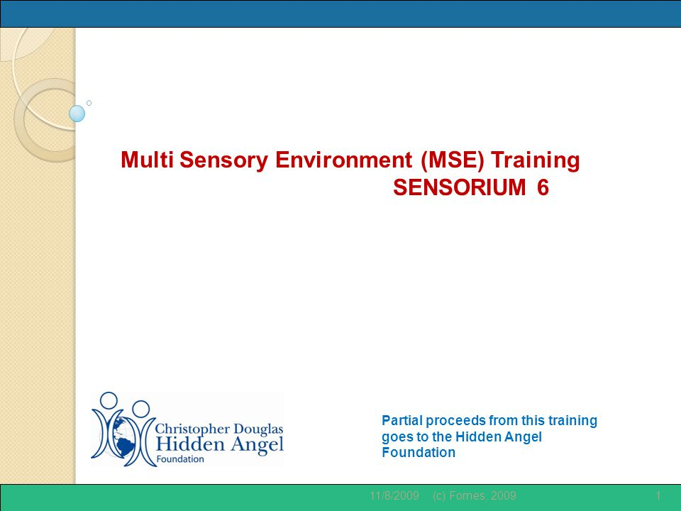 Partial proceeds from this training goes to the Hidden Angel Foundation Multi Sensory Environment (MSE) Training SENSORIUM 6 11/8/20091(c) Fornes, 2009
