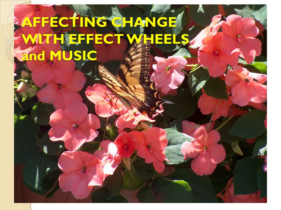 AFFECTING CHANGE WITH EFFECT WHEELS and MUSIC