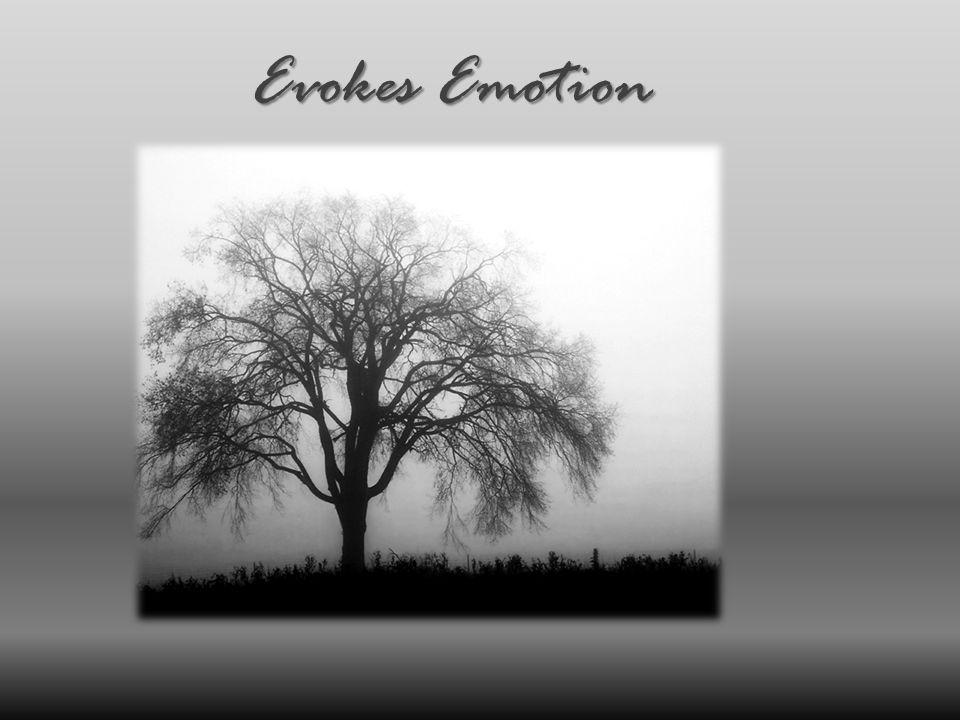 Evokes Emotion