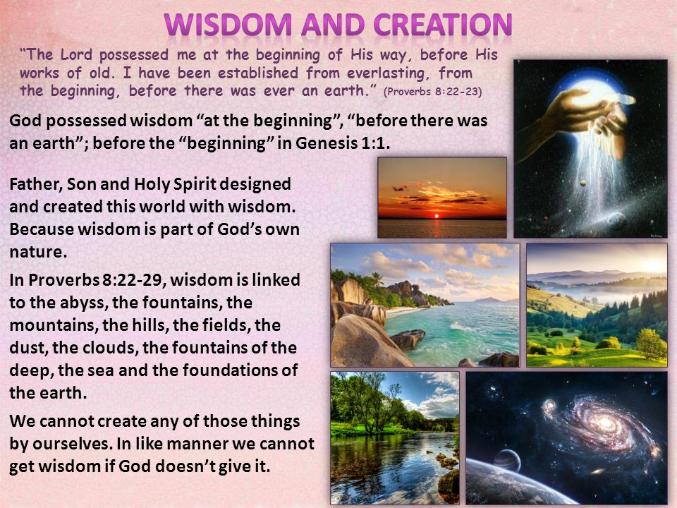 How is wisdom's joy related to the Creation week.