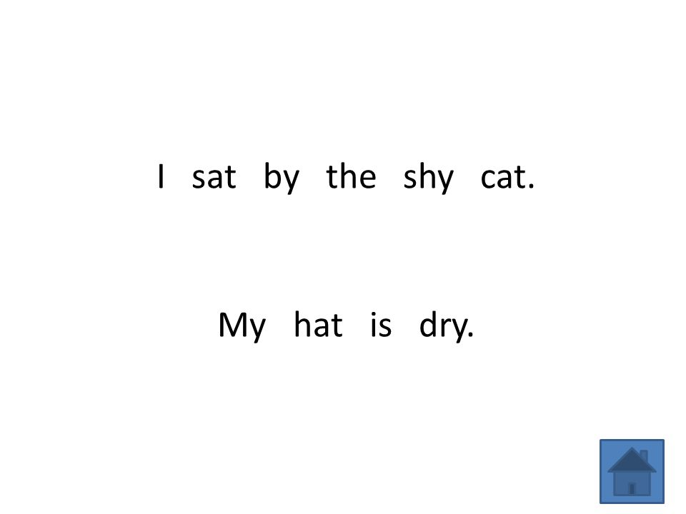 I sat by the shy cat. My hat is dry.