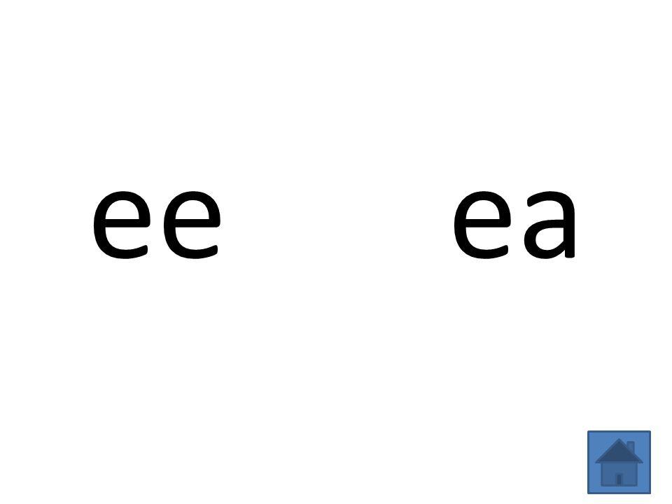 ee ea