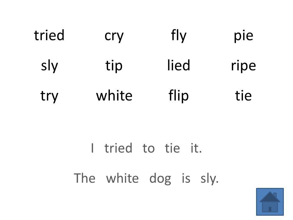 triedcryflypie slytipliedripe trywhitefliptie I tried to tie it. The white dog is sly.