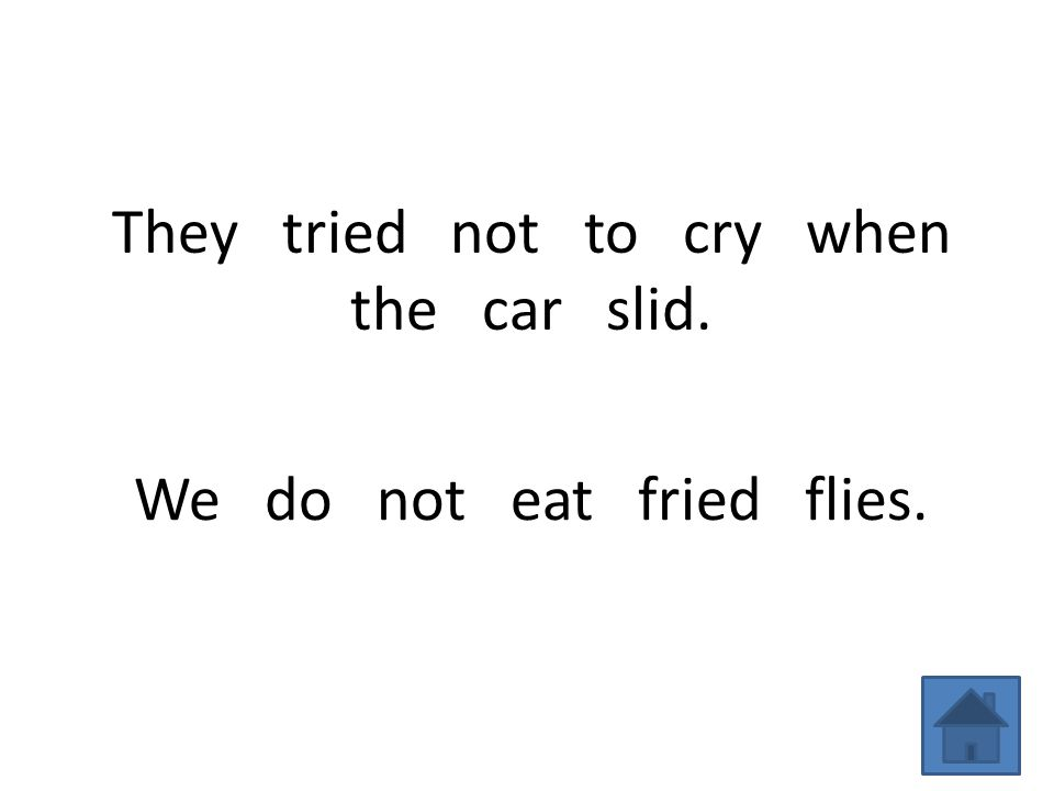 They tried not to cry when the car slid. We do not eat fried flies.