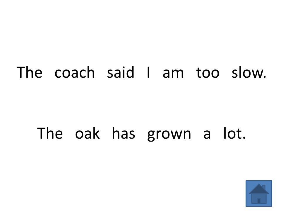 The coach said I am too slow. The oak has grown a lot.