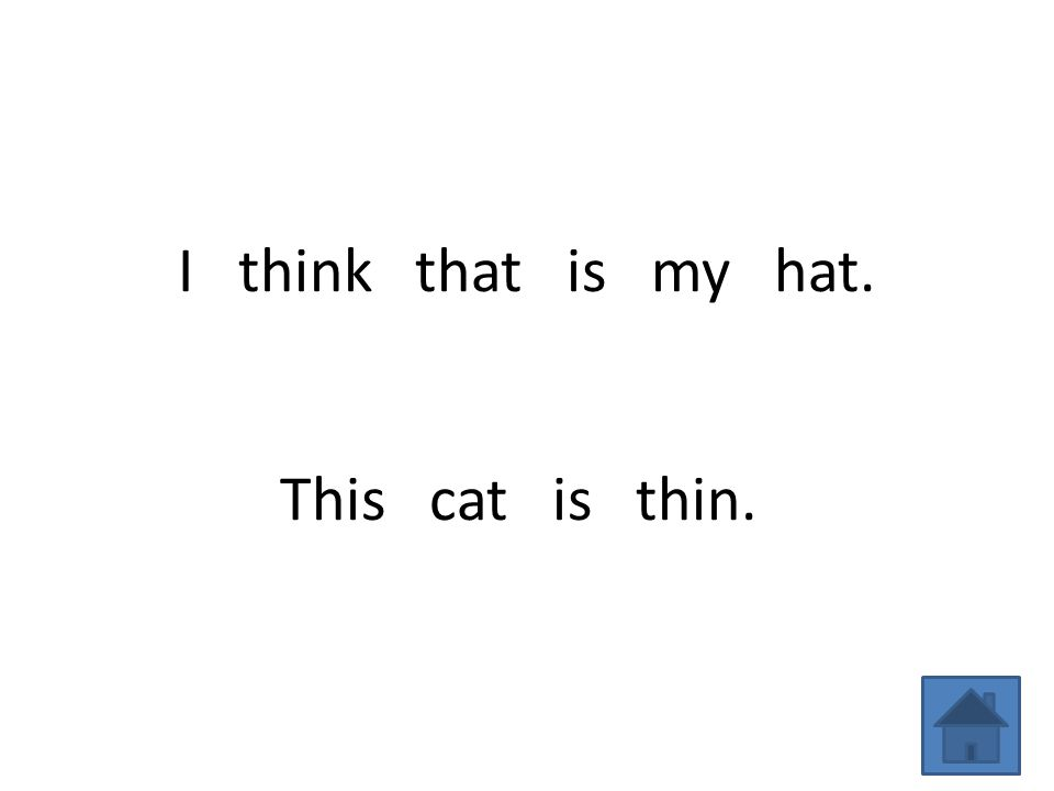 I think that is my hat. This cat is thin.