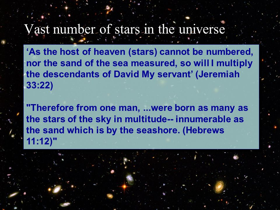 'As the host of heaven (stars) cannot be numbered, nor the sand of the sea measured, so will I multiply the descendants of David My servant' (Jeremiah 33:22) Therefore from one man,...were born as many as the stars of the sky in multitude-- innumerable as the sand which is by the seashore.