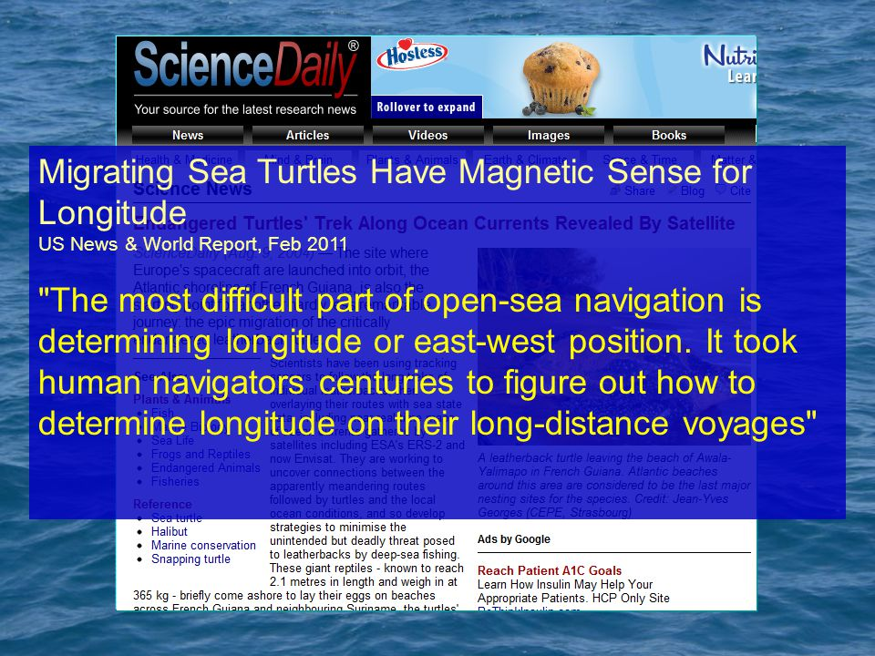 Migrating Sea Turtles Have Magnetic Sense for Longitude US News & World Report, Feb 2011 The most difficult part of open-sea navigation is determining longitude or east-west position.